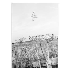 free zwart wit fotografie muurposter