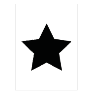 poster ster zwartwit