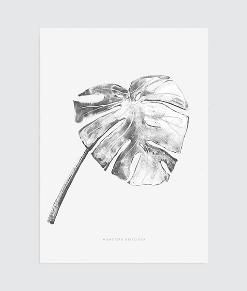 botanical-poster-interieurtrend-vtwonen-2016