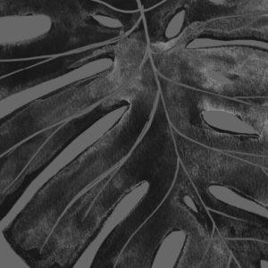 monstera-vingerplant-poster-botanicalposter