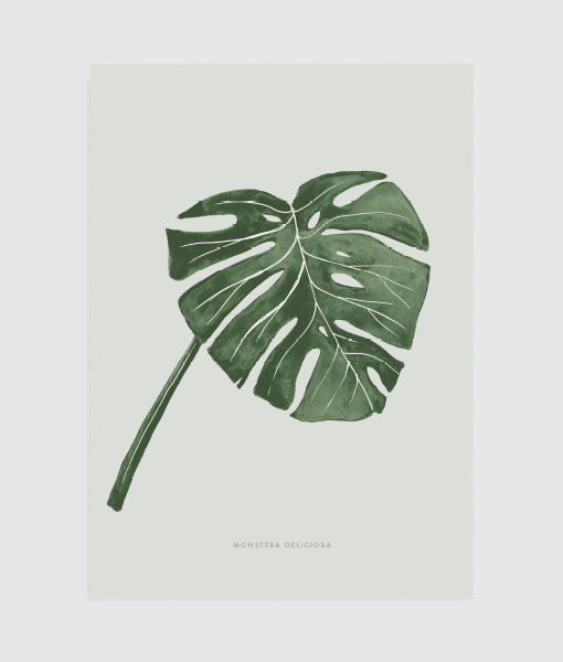 monstera-vingerplant-botanische-poster
