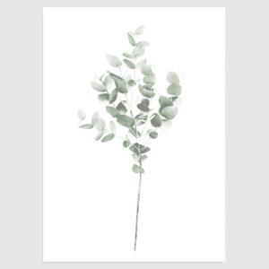 botanische-poster-minimalistisch